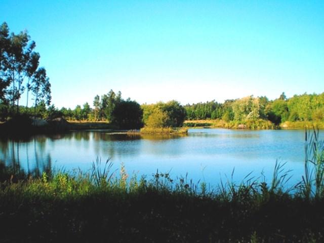 Lagoa dos Coadiçais